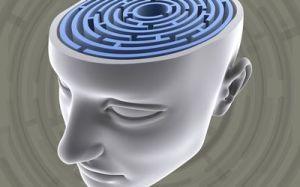 brain labirynth